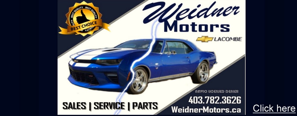 WEID-ad template star collector car-003