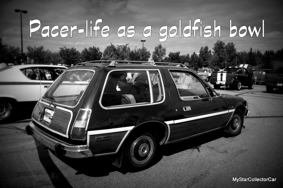 Life As A Goldfish Bowl For The Amc Pacer Mystarcollectorcar