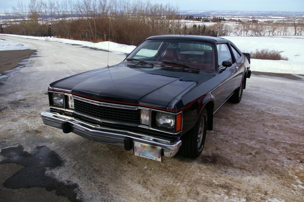 MY STAR 80 ROADRUNNER 1