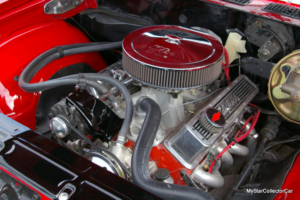 IMGP4455