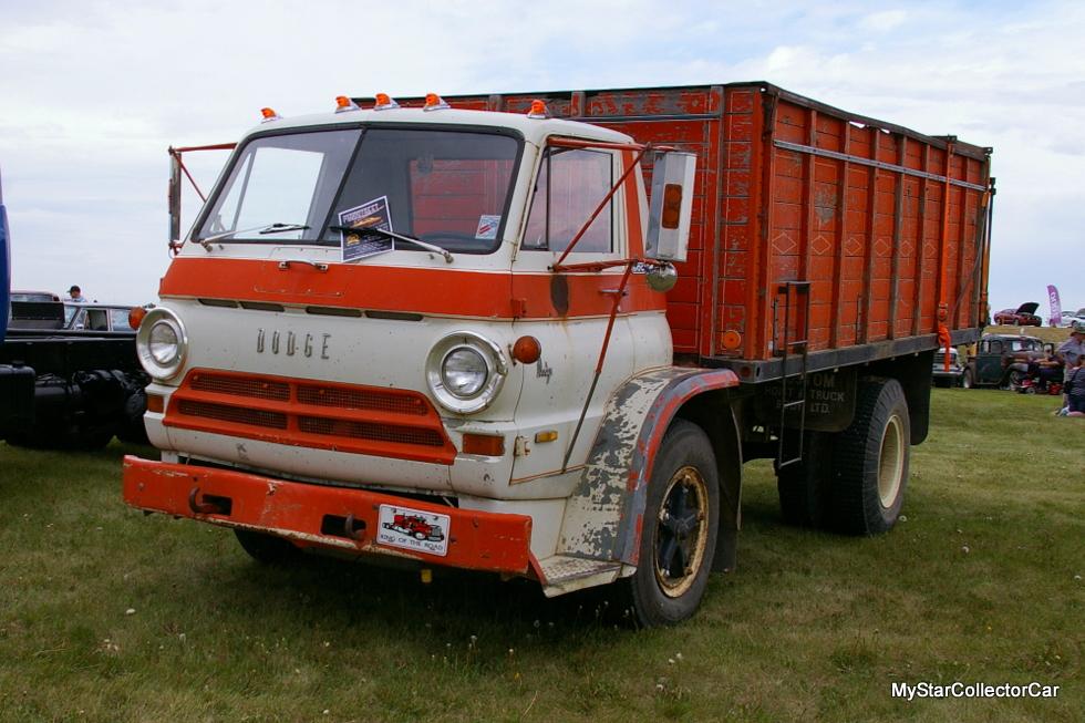 IMGP4666