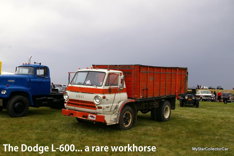 IMGP4746-001
