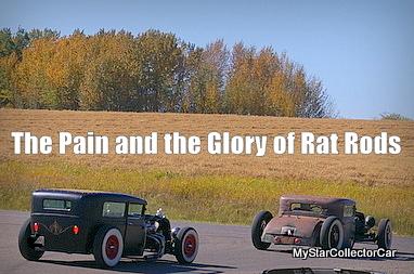 rat-imgp0703