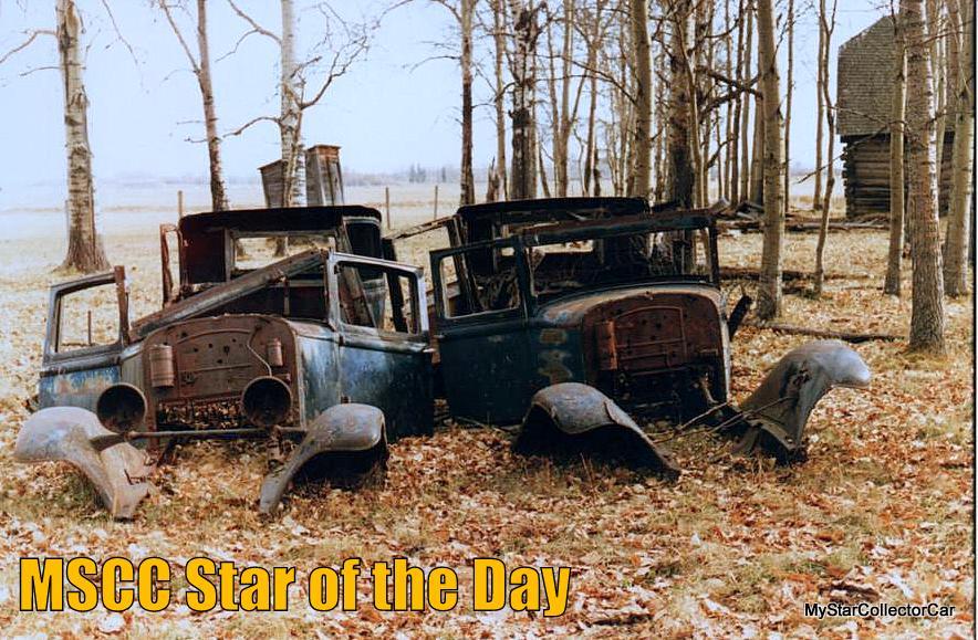 MY STAR FALLEN STAR WAYNE 160