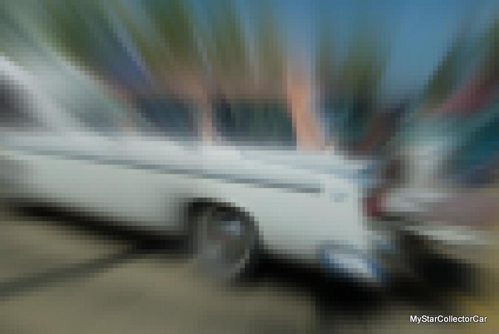 IMGP9513-001